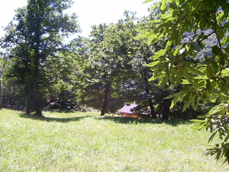 Campo Bosco Aquila (Zeltplatz/Campeggio), 6711 Aquila - 1043