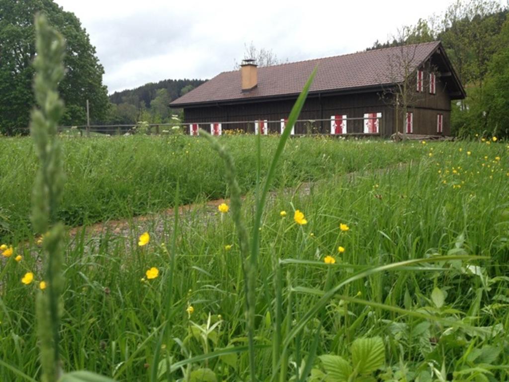 Pfadiheim Loberg, 9524 Zuzwil - 521