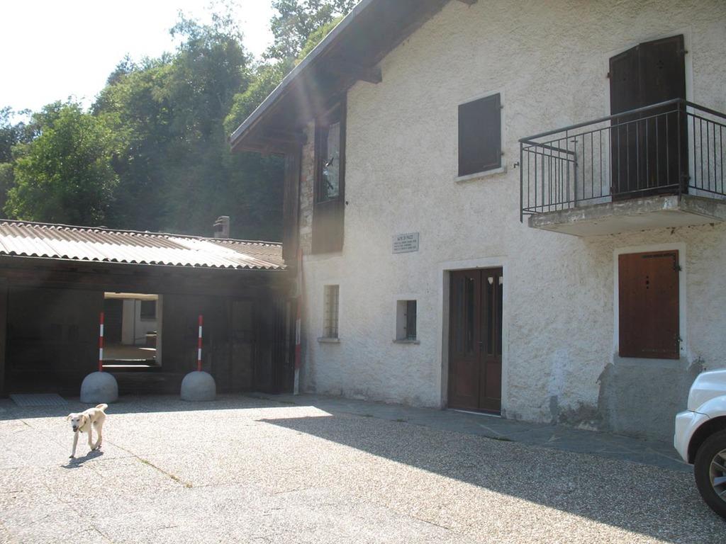 Alpe di Pazz • casa • Pfadiheim, 6986 Novaggio - 6221